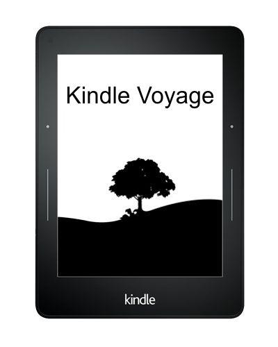 kindle voyage tokok